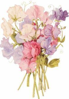 Glanzbilder - Victorian Die Cut - Victorian Scrap - Tube Victorienne - Glansbilleder - Plaatjes : Strauß - bouquet
