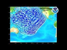 Tsunami: a velocidade da onda provocada por terramoto magnitude 9,0 (Japão 11.03.2011)