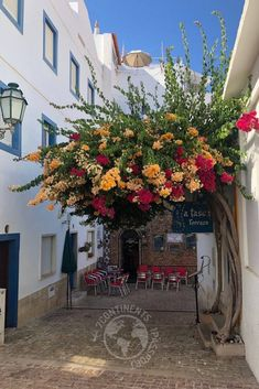 Europe Destinations, Europe Travel Tips, Places To Travel, Visit Portugal, Spain And Portugal, Portugal Travel, European Vacation, European Travel, Travel Ideas