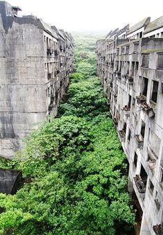 Bild: Leeres Appartmenthaus in Taiwan (© Via www.flickr.com/photos/21180236@N03/)Dieser Appartment-Komplex in der Nähe der taiwanesischen Stadt Zhongzeng ist völlig überwuchert. Die Baufirma ging vor 15 Jahren pleite. Inzwischen ist in der verlassenen Siedlung ein richtiger Wald gewachsen.