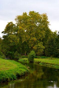 CONCHES EN OUCHE - Cours d'eau ITON, Haute-Normandie, France - Crédit Photo Sandra GARRIDO via Flickr #normandie #Conches #paysage #lanscape #tourisme #paris #Eure #riviere #arbre #iton #Evreux