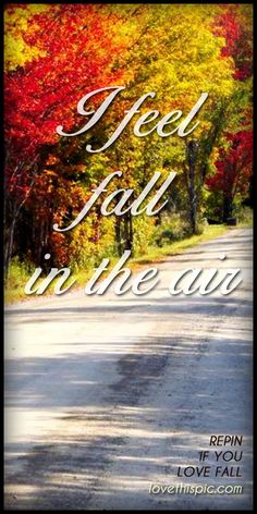 Yep and the forecast is proving me right,  Thinking about it,and I came up with,  I don't hate Fall just what comes after it.  So not ready for Winter again.  Gosh I really have to move to a nicer climate.