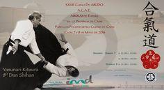 BUDOKAN SEVILLA blog: Cádiz, cumbre mundial del Aikido