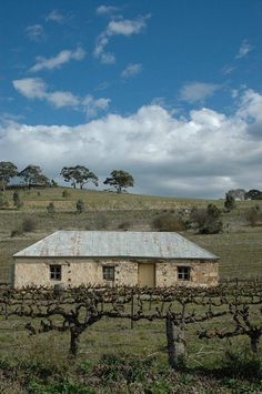 A region known for its excellent wines. Wine Country, Country Life, Clare Valley, Adelaide South Australia, Kangaroo Island, Land Of Oz, Australian Homes, Places Of Interest, Wanderlust Travel