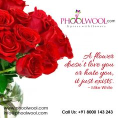 Follow @phoolwool for more updates. Quotes, Flowers, Qoutes, Dating, Floral, Quotations, Royal Icing Flowers, Shut Up Quotes, Florals