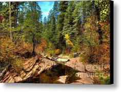 Autumn By The Stream Canvas Print / Canvas Art By K D Graves