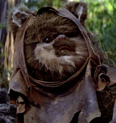 User:Ozzel/Ewoks - Wookieepedia, the Star Wars Wiki Star Wars Art, Star Trek, Star Wars Episode 6, Star Wars Species, Star Wars Canon, Star Wars Images, Star War 3, Ewok, Fantasy Movies