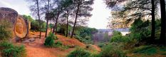 Krishna - Ruta de las caras Hiking, Country Roads, Plants, Krishna, Travel, Family Activities, Trekking, Sculpture, Viajes