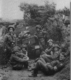 Dday 1944  PETIT-DIEULOIS