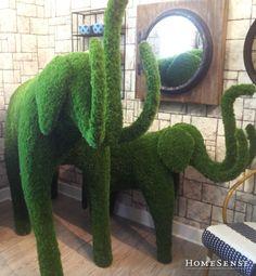 Chia Pet, Homesense, Flower Shops, Spring Blooms, Bath, Spring Style, Decoration, Spring Fashion, Garden Design