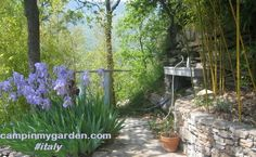 Hide in the hills of #italy #camping #travel #sharingeconomy #nocrowds http://tinyurl.com/mp6c3fr