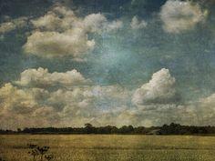 Sarah Jarrett Artist: Big Blue Sky
