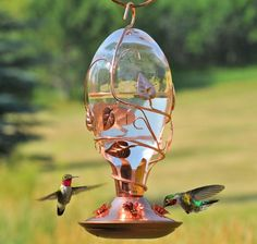 It is possible to either receive a hummingbird feeder with an integrated ant moat, attach a guard or moat to your present feeder or create your own. If you'd like to buy a hummingbird feeder,… Hummingbird Nectar, Glass Hummingbird Feeders, Humming Bird Feeders, Humming Birds, Hummingbird Food, How To Attract Hummingbirds, Attracting Hummingbirds, Bright Flowers, Backyard