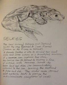 """""""Faeries"""" by Brian Froud and Alan Lee, 1978 This lovely book made me strangelyknowledgeableabout faeries and spirits as a young child. My mother bought it in the year of publication."""