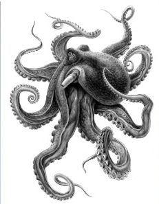 Best Tattoo Ideas For Men And Women With meaning - Kraken - Best Tattoo Share Octopus Tattoo Sleeve, Kraken Tattoo, Octopus Tattoo Design, Octopus Tattoos, Leg Tattoos, Sleeve Tattoos, Cool Tattoos, Tattoo Designs, Lion Tattoo