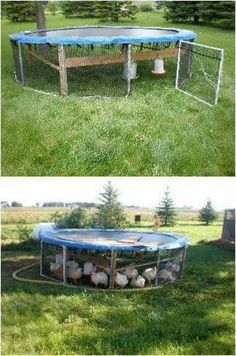 What a great chicken tractor! – # for # chicken tractor Backyard Chicken Coop Plans, Cheap Chicken Coops, Chicken Coup, Portable Chicken Coop, Chicken Pen, Best Chicken Coop, Building A Chicken Coop, Chickens Backyard, Small Chicken Coops
