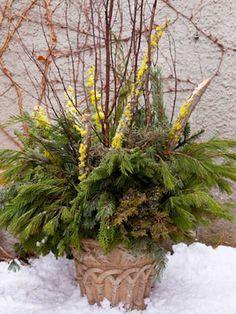 :) Winter #garden #planter