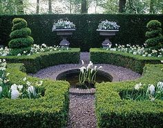 Topiary and water feature