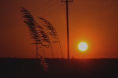 Photograph Sun by Adrian Stefan on 500px
