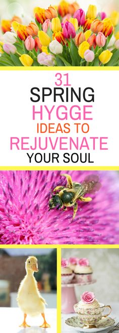 31 Spring Hygge Ideas to Rejuvenate Your Soul