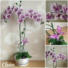 мини-МК Орхидея Claire Sidorova