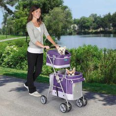 Double Decker Pet Stroller- What my husband won't let me get for my two chihuahua boys!:)