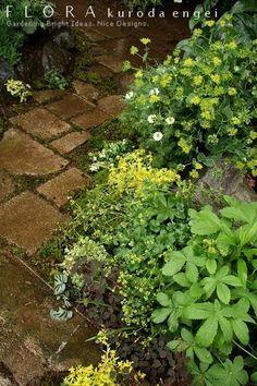 フローラのガーデニング・園芸作業日記-ガーデン小道作り