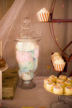 Vintage Circus / Carnival 1st Birthday Party!