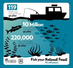 """""""Go fish your national forests! Agriculture Facts, Forest Service, Going Fishing, National Forest, Forests, Twitter, Woodland Forest, Woods"""