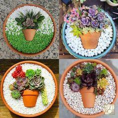 Sterile soil for Indoor Plants . Sterile soil for Indoor Plants . 65 Best Indoor Plant Care Images In 2020
