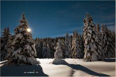E con questa chiudo ufficialmente con le foto invernali :-) Ivan Previsdomini © 2014