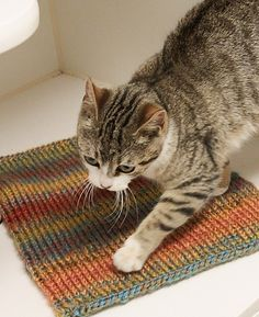 Purr-fect! Knit a blanket for your local animal shelter and help cats and dogs in need! Check out these easy knit patterns made with Hometown USA and Wool-Ease Thick & Quick!