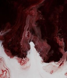 The water turned dark red, as they washed Alex's wounds.  He was still conscious, breathing hard as they touched his painful wounds.  But he didn't cry out.  He just groaned a little bit, and tears would fall down his face.  Mary laid next to the tub, and rubbed his face gently as the doctor wash his wounds.