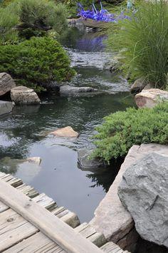 Dale Chihuly Exhibit at Botanic Gardens taken with my Nikon D90