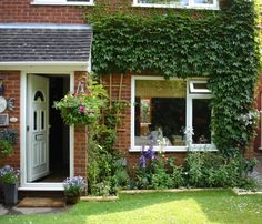 english cottages   ... front of the house with old fashioned english cottage plants