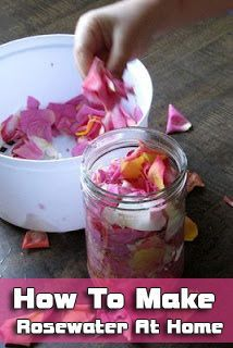How To Make Rosewater At Home-- place in squirt bottle for yummy linen spray Más Homemade Beauty, Diy Beauty, Beauty Hacks, Beauty Tips, Herbal Remedies, Natural Remedies, Making Rose Water, Deco Cupcake, Wiccan Crafts