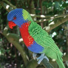 Hoi! Ik heb een geweldige listing op Etsy gevonden: https://www.etsy.com/nl/listing/240639862/amigurumi-rainbow-lorikeet-crochet