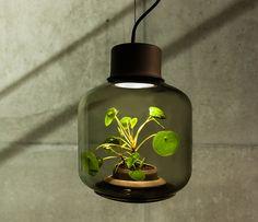Aydınlatma ve Dekor Dünyasından Gelişmeler: We Love Eames'den Mygdal Plant Aydınlatma #aydinlatma #lighting #design #tasarim #dekor #decor