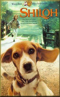 Wonderful. Shiloh is a story by Phyllis Reynolds Naylor about a boy and his dog.