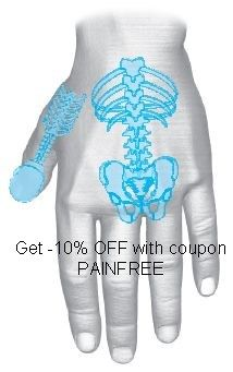 Spine Su Jok Concordance zone Get -10% DISCOUNT with coupon PAINFREE at out store www.denashealthstore.com Acupressure, Coupons, Reiki, Massage, Alternative, Store, Health, Acupuncture, Health Care