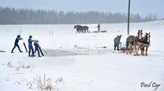 Ice harvesting time in Northern Maine ~ Sarah's Country Kitchen ~
