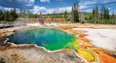 See this video for an example of what might be seen in Yellowstone National Park tours. Read more about Yellowstone park here. Yellowstone Volcano, Visit Yellowstone, Yellowstone Camping, Yellowstone Campgrounds, Yellowstone National Park Tours, National Geographic Expeditions, Visit Montana, Thermal Pool, Sustainable Tourism