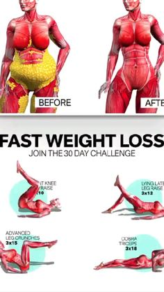 Body Weight Leg Workout, Full Body Workout Routine, Weight Loss Workout Plan, Fat Workout, Workout Challenge, Gym Workout Videos, Gym Workout For Beginners, Fitness Workout For Women, Exercises