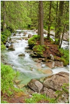The Cold Creek Valley is famous for its chain of waterfalls. Tatry, Slovakia