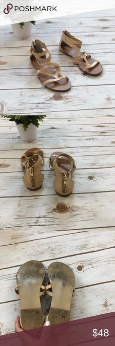 Steve Madden Gladiator Sandals Steve Madden gladiator sandals with gold accents and nude leather. Only worn a few times and still in excellent condition. Zipper on the back. Steve Madden Shoes Sandals
