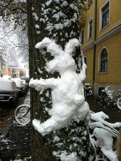 first snow man - eh snow wabbit :)