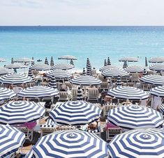 French Riviera                                                                                                                                                                                 More