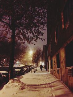 Snow day in Park Slope, Brooklyn, New York, NY