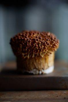 Blog | Noel Barnhurst | Food Photographer