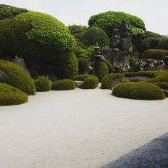 I'm at chiran! 武家屋敷と聞くと張り切るたちだよ。  #chiran #kagoshima